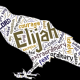 Elijah 9: Hello and Goodbye
