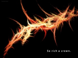 Crown_of_thorns_2