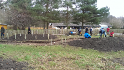 In Pictures: Community Planting Day